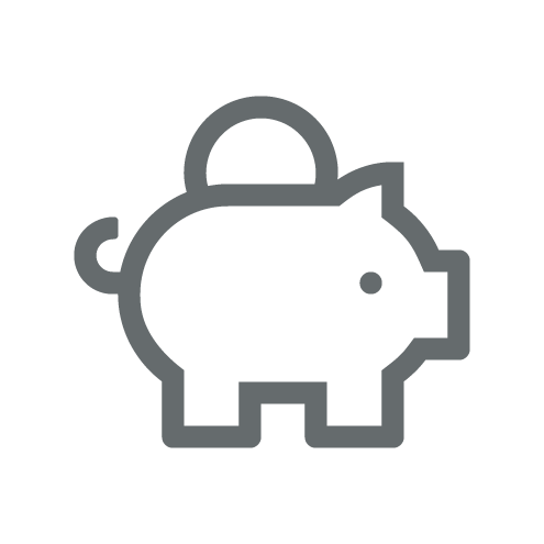 Investment Programme Icon